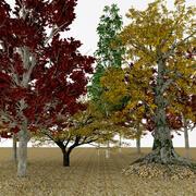 árvores de outono 3d model