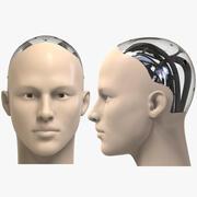 Humanoid Head 3d model