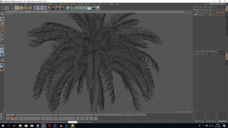 Beach Palm Tree Model royalty-free 3d model - Preview no. 5