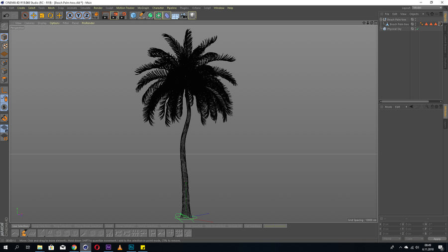 Beach Palm Tree Model royalty-free 3d model - Preview no. 3