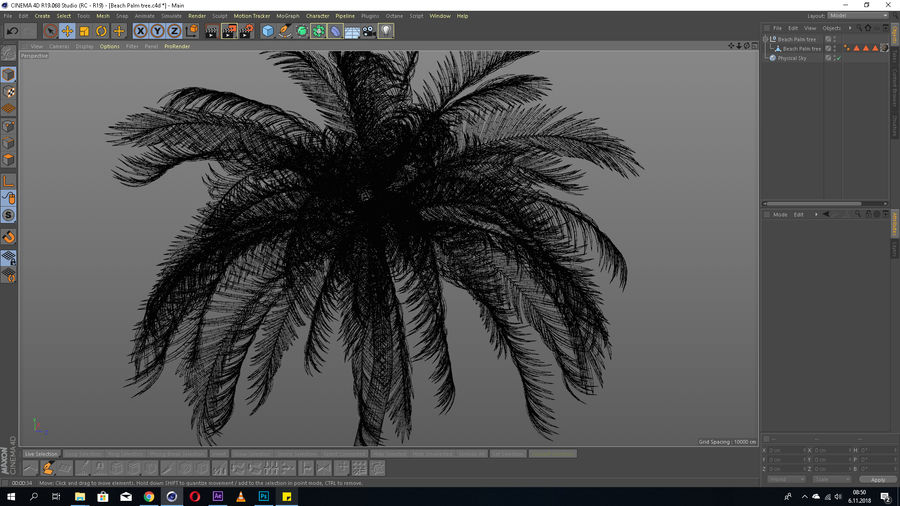 Beach Palm Tree Model royalty-free 3d model - Preview no. 6