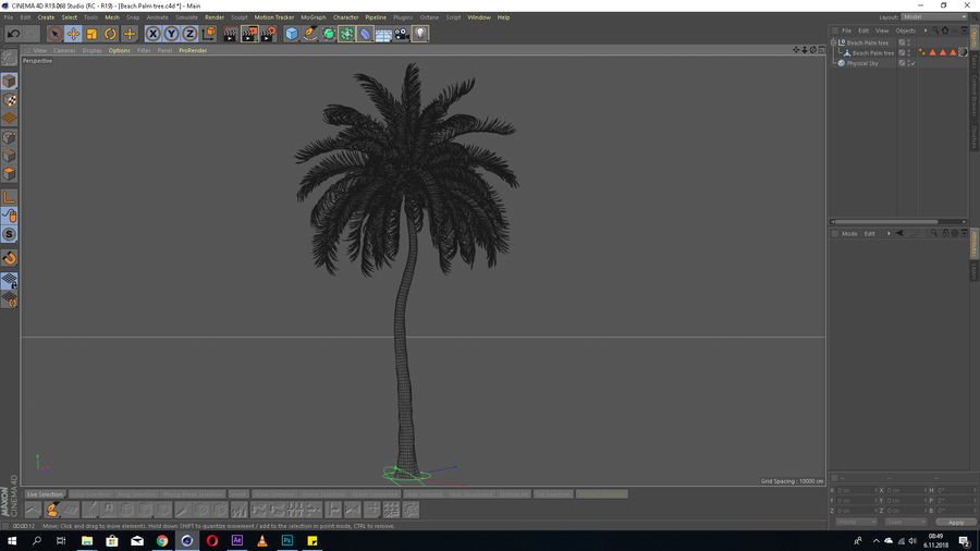 Beach Palm Tree Model royalty-free 3d model - Preview no. 2