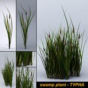 沼地-TYPHA-ゲーム資産 3d model