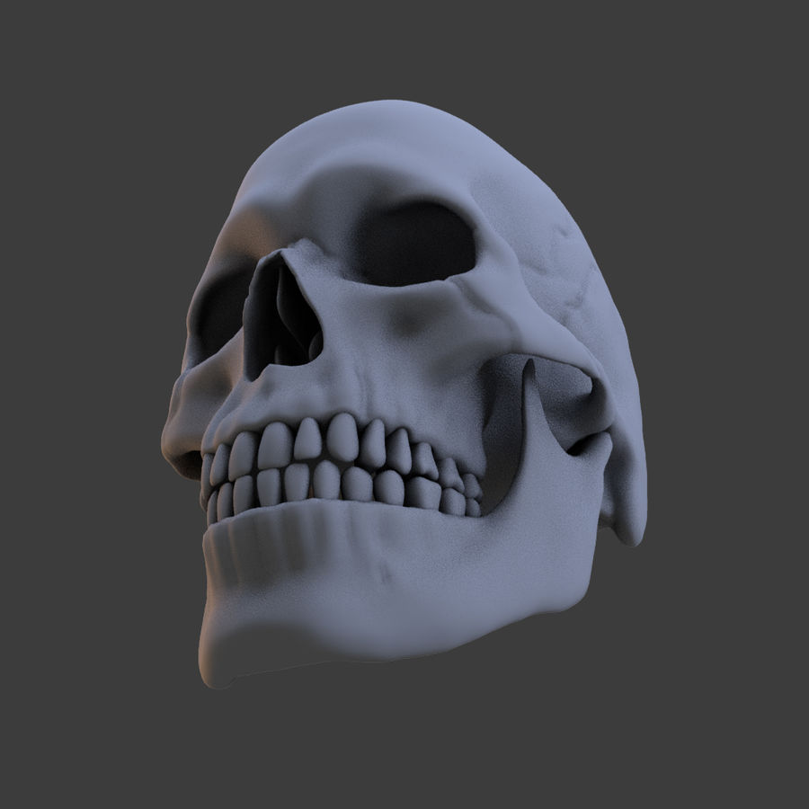 High Poly Skull royalty-free 3d model - Preview no. 4