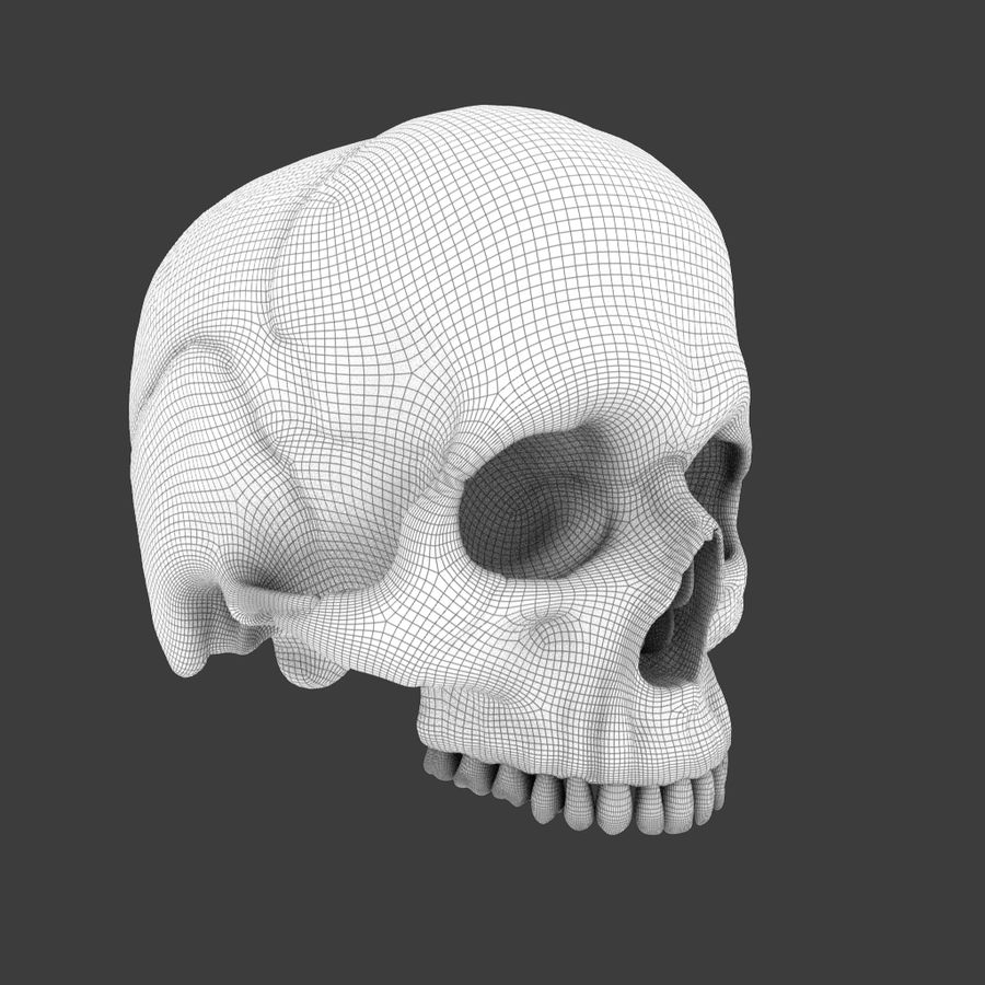 High Poly Skull royalty-free 3d model - Preview no. 11