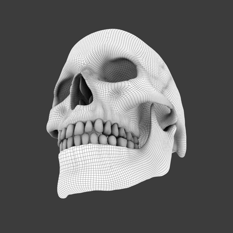 High Poly Skull royalty-free 3d model - Preview no. 5