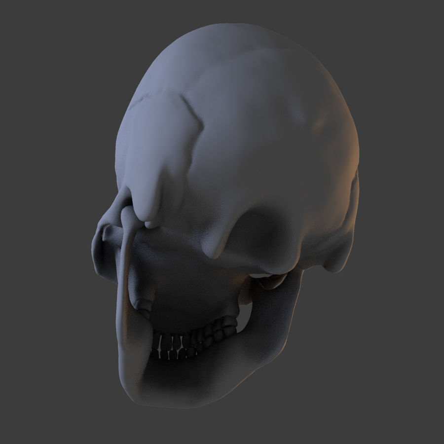 High Poly Skull royalty-free 3d model - Preview no. 6