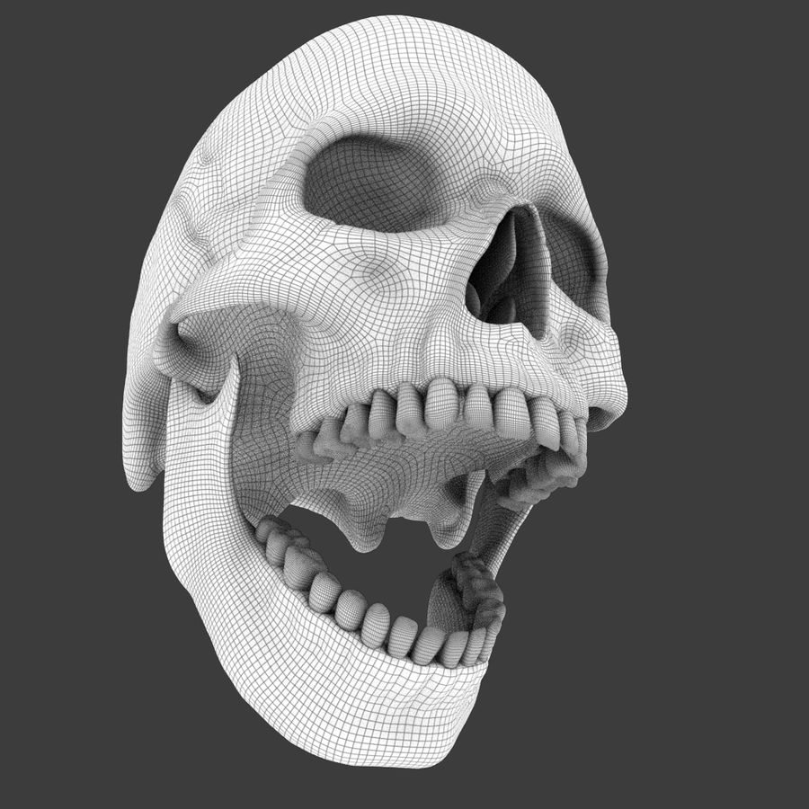 High Poly Skull royalty-free 3d model - Preview no. 21