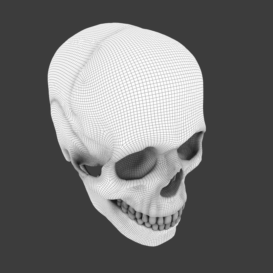 High Poly Skull royalty-free 3d model - Preview no. 3