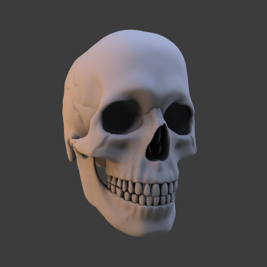 High Poly Skull royalty-free 3d model - Preview no. 1