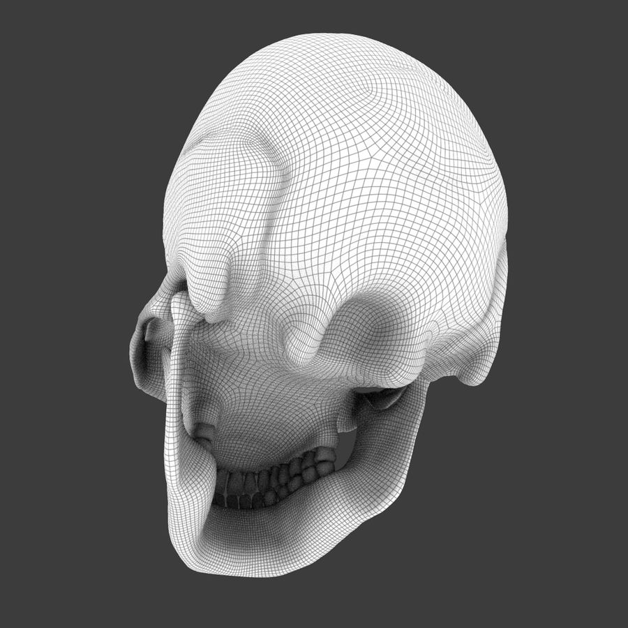 High Poly Skull royalty-free 3d model - Preview no. 7