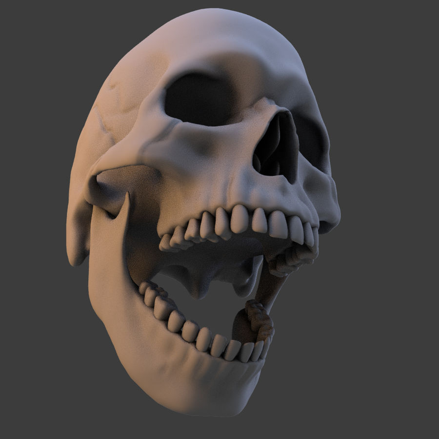 High Poly Skull royalty-free 3d model - Preview no. 20