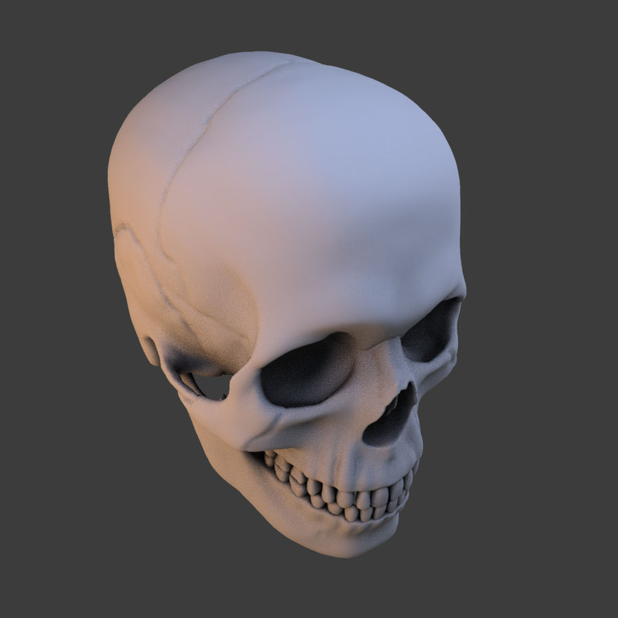 High Poly Skull royalty-free 3d model - Preview no. 2