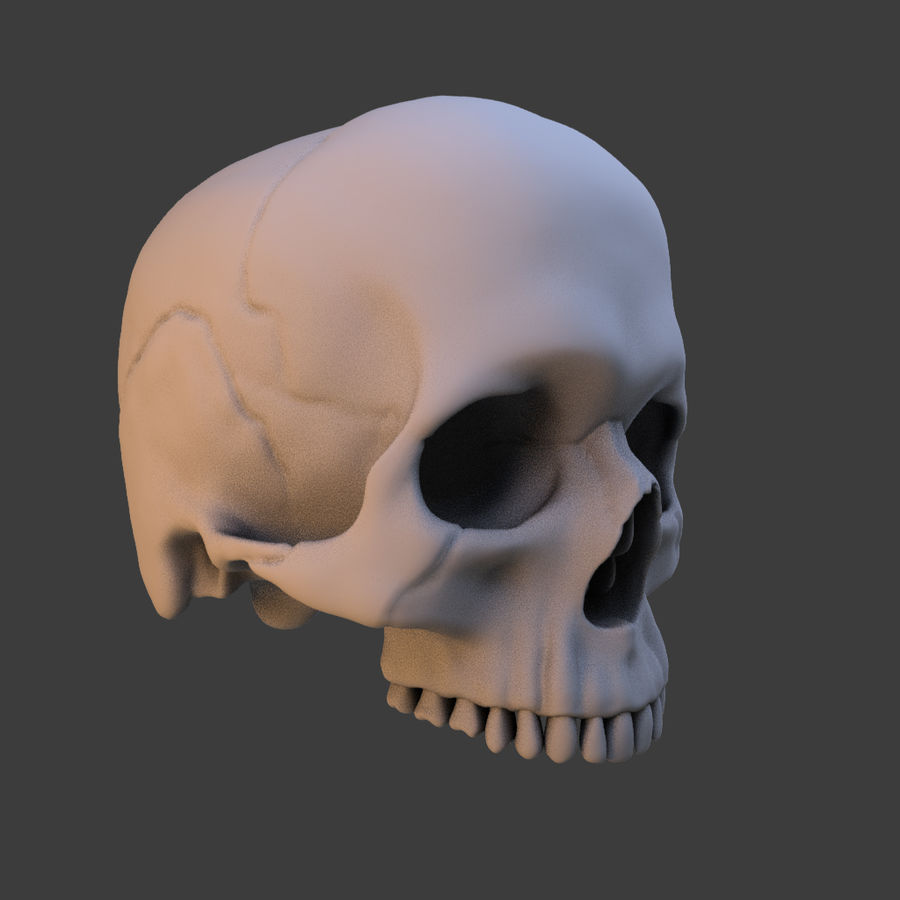 High Poly Skull royalty-free 3d model - Preview no. 10