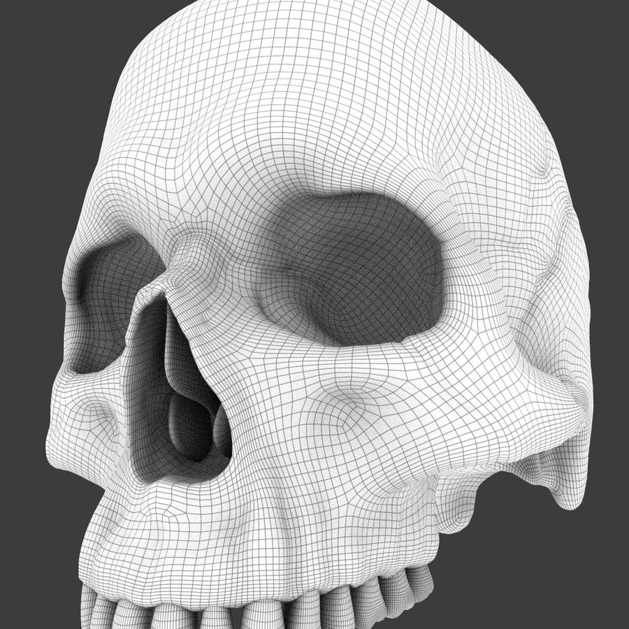High Poly Skull royalty-free 3d model - Preview no. 15