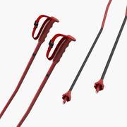 Ski Poles Generic 3D Model 3d model