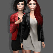 Leather Jacket and Dress 3d model