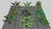 Lowpoly Tropical Pack 3d model