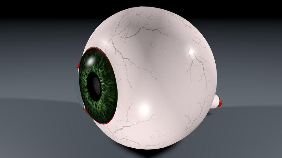 Анатомия человеческого глаза royalty-free 3d model - Preview no. 1