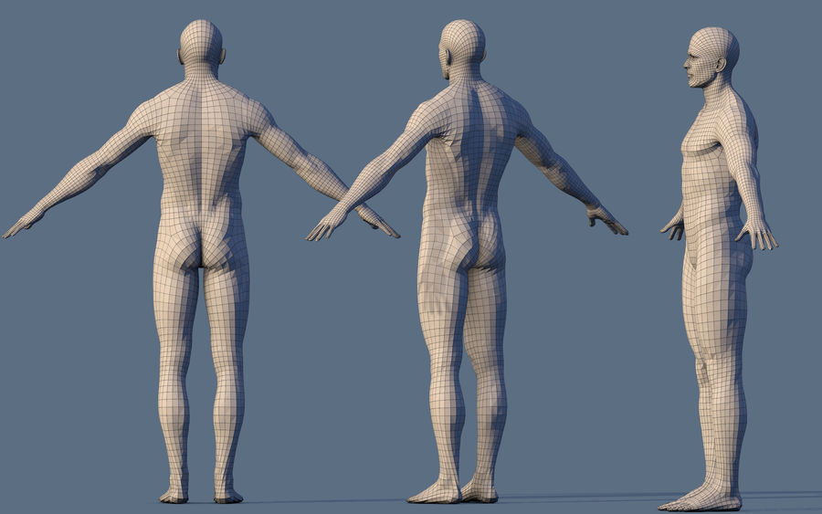 Base Character Male or female royalty-free 3d model - Preview no. 9