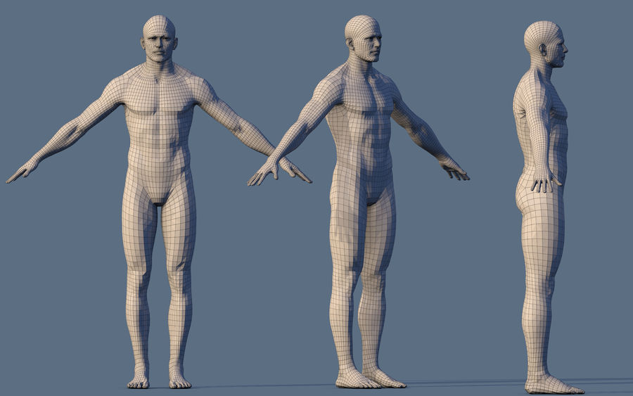 Base Character Male or female royalty-free 3d model - Preview no. 7