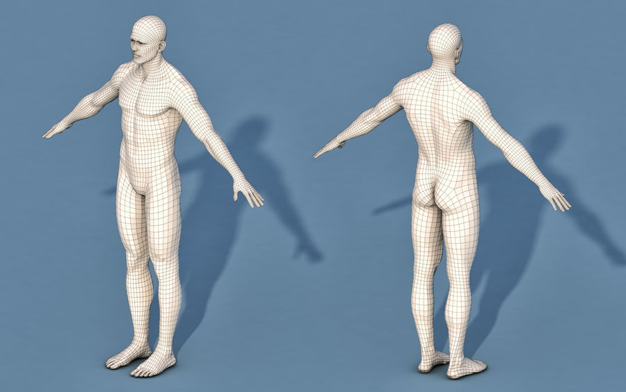 Base Character Male or female royalty-free 3d model - Preview no. 3
