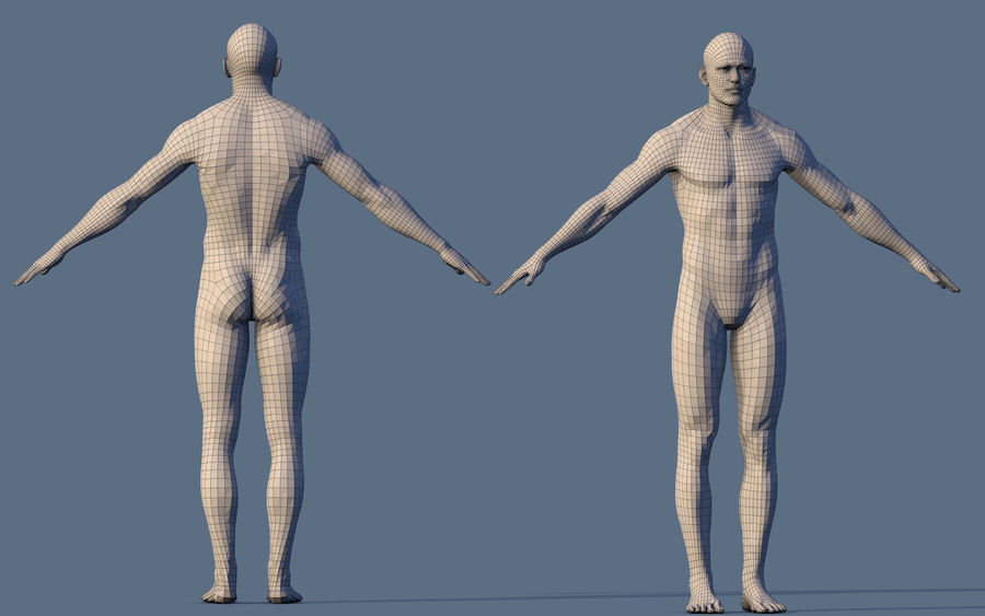 Base Character Male or female royalty-free 3d model - Preview no. 5