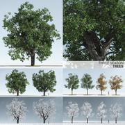 Three Season Trees 3d model