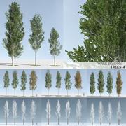 Three Season Trees 4: Poplar (+Growfx) 3d model