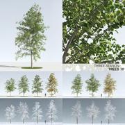 Three Season Trees 10 (+GrowFX) 3d model