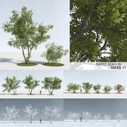 Three Season Trees 11 (+GrowFX) 3d model