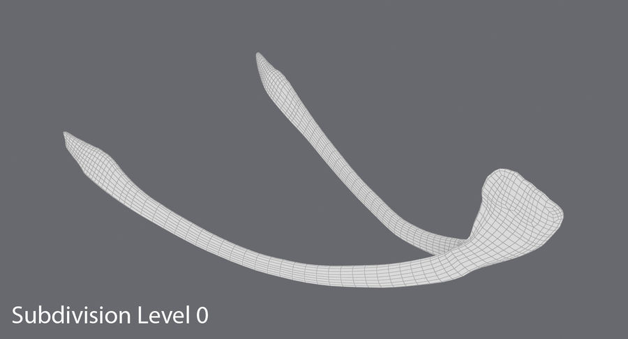 Wishbone royalty-free 3d model - Preview no. 15