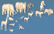 Zwierzęta z dżungli 3d model
