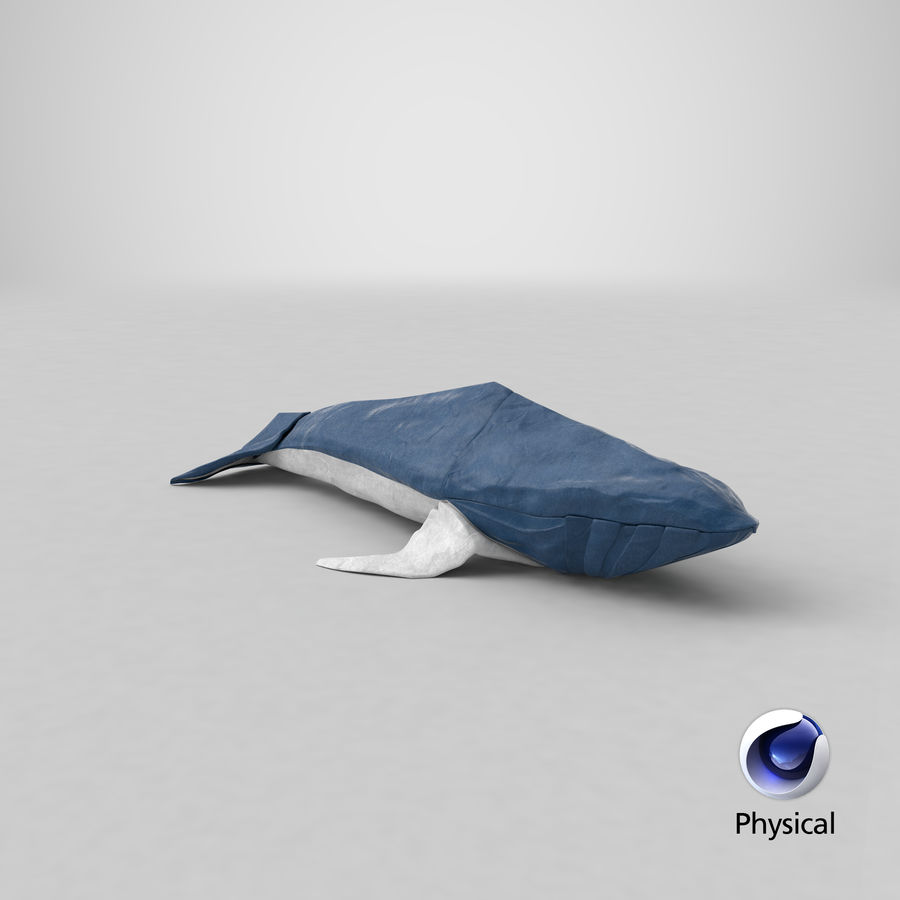 Origami Whales Project - Newf Surfboard Net | 900x900