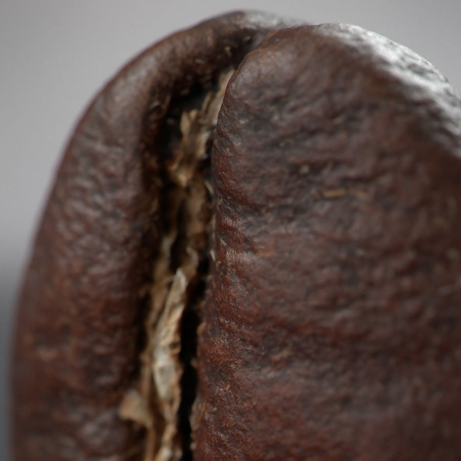 coffee beans royalty-free 3d model - Preview no. 10