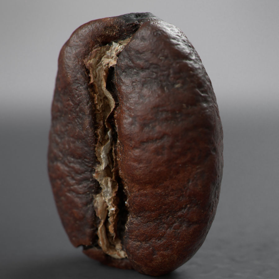 coffee beans royalty-free 3d model - Preview no. 7