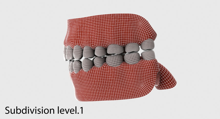 Bouche royalty-free 3d model - Preview no. 31