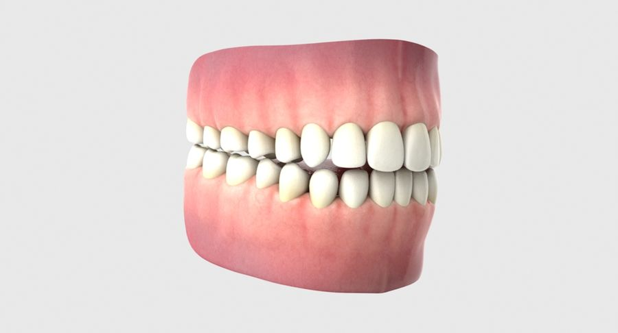 Bouche royalty-free 3d model - Preview no. 14