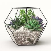 植物园 3d model