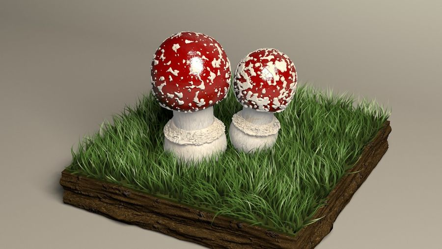 Agaricus der Pilzfliege royalty-free 3d model - Preview no. 1