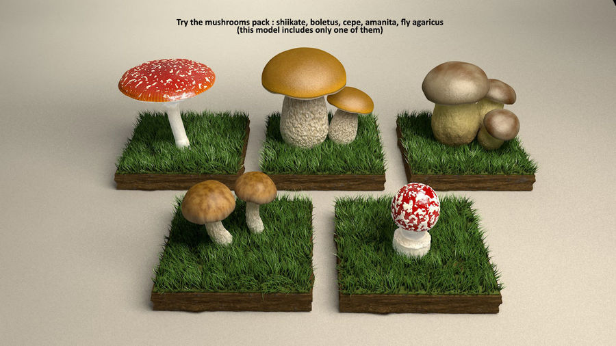 Agaricus der Pilzfliege royalty-free 3d model - Preview no. 5