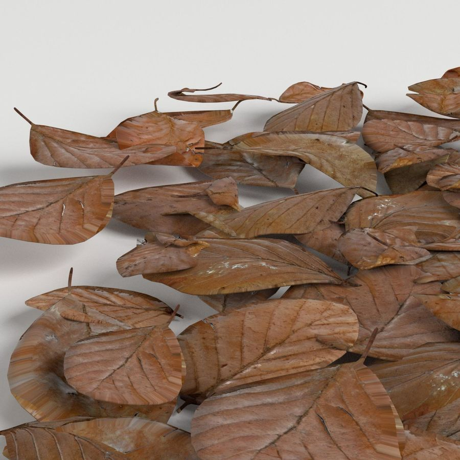 Dead leaves module royalty-free 3d model - Preview no. 3