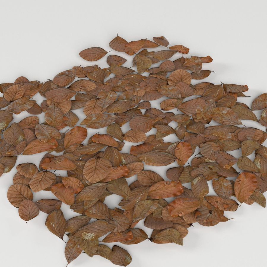 Dead leaves module royalty-free 3d model - Preview no. 2