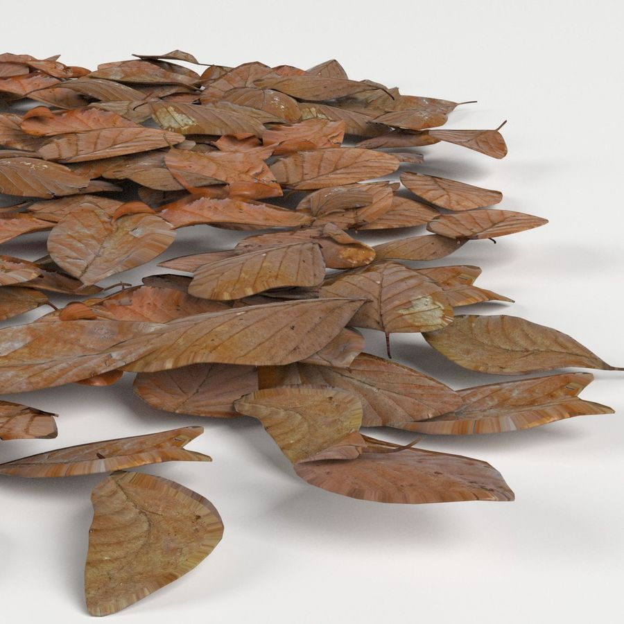 Dead leaves module royalty-free 3d model - Preview no. 4