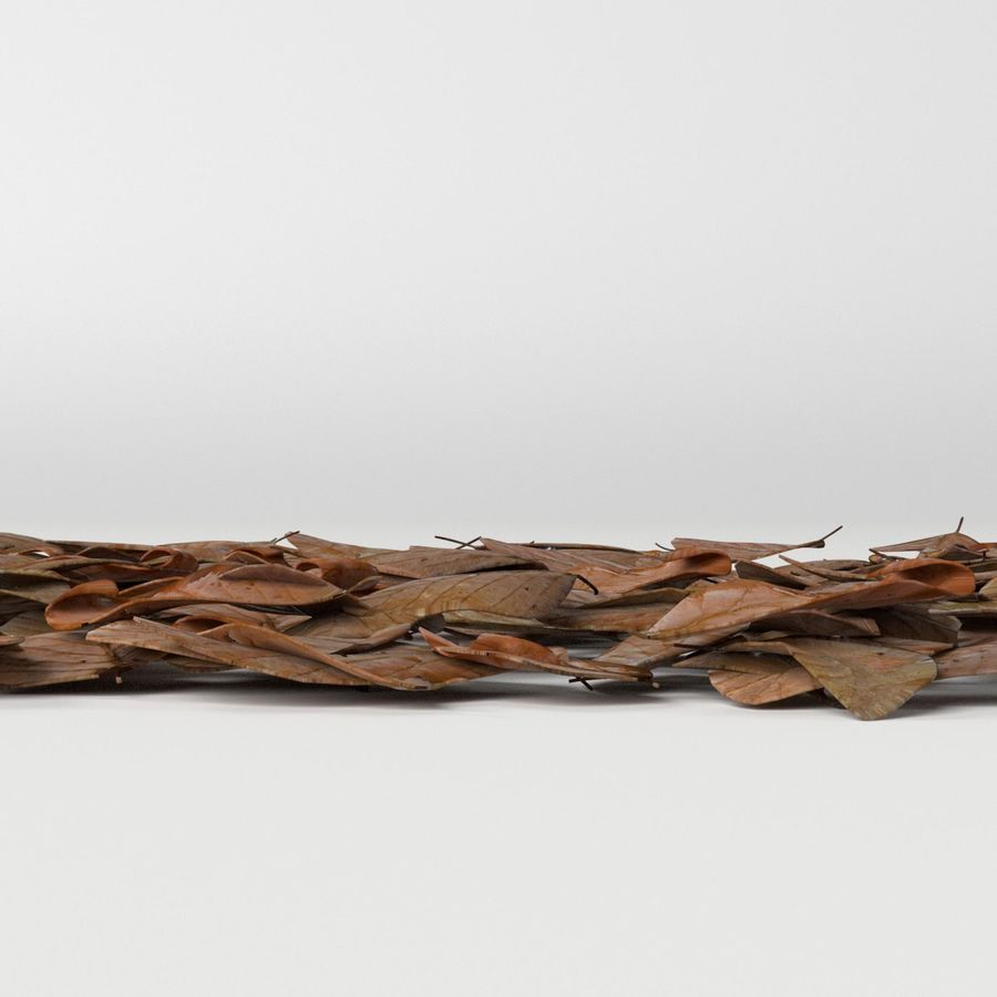 Dead leaves module royalty-free 3d model - Preview no. 5