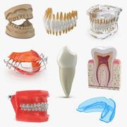 Dental Collection 3 3d model