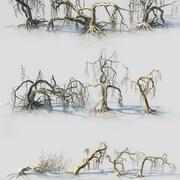 Spooky Animated Forest Pack 10 3d model