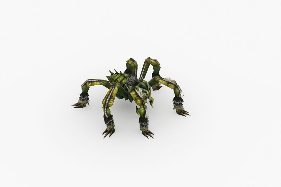 Animated Rigged Spider royalty-free 3d model - Preview no. 10