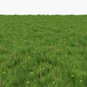 Grass with dandelions Lowpoly Game Ready 3d model