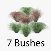Carex Pack 3d model